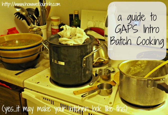 GAPS Intro Diet Batch Cooking