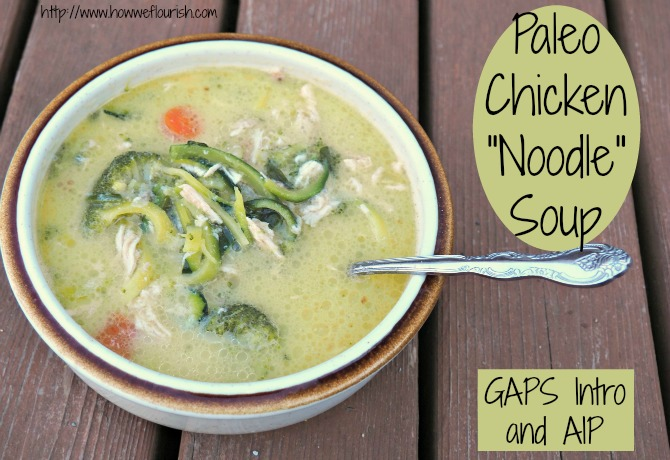 Paleo Chicken Noodle Soup